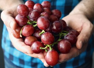 Organic Foods: Why You Should Buy Directly From Farmers
